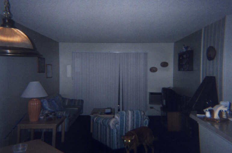 A shot of our living room...Notice the glowing eyes!!!