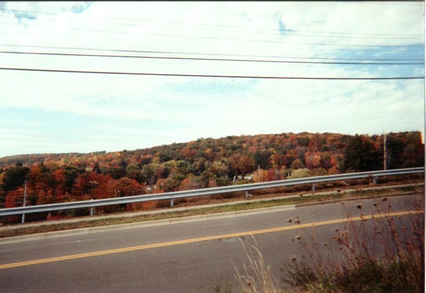 These are some of the pretty colors as Fall sets in.