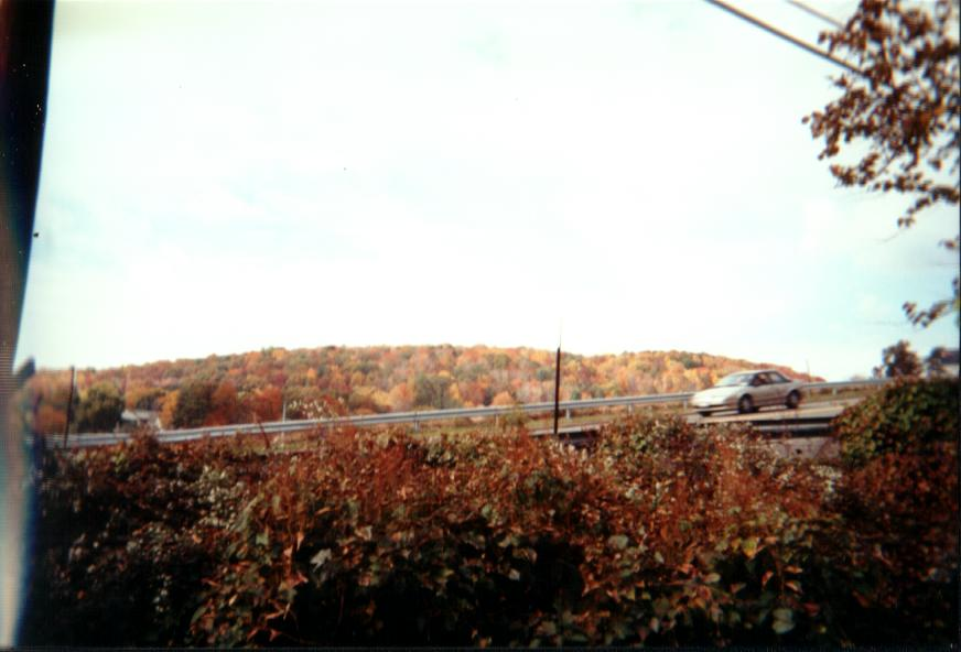 These are some more of the pretty colors as Fall sets in.